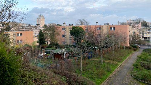 A Châtenay-Malabry : la Butte-Rouge, un éco-quartier vieux d'un siècle aujourd'hui menacé