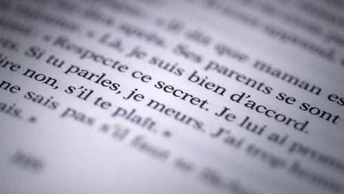 Les complexités de l'affaire Duhamel-Camille Kouchner