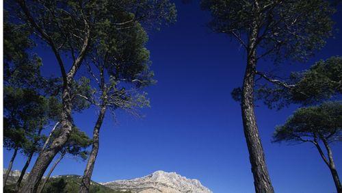 """""""Le hussard sur le toit"""" de Jean Giono (1/15) : Premiers pas en Provence"""