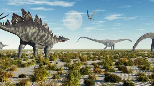 Covid pédiatrique, apparition des dinosaures et arbres à poison