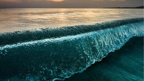 Tsunamis et pluies extrêmes / Phagothérapie / Organoïdes cérébraux
