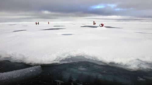 Coronavirus, une conversation mondiale : que nous apprennent l'Arctique et l'Antarctique ?