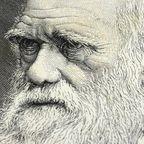 L'Origine des espèces de Darwin