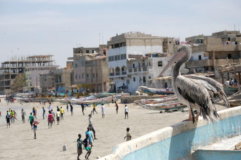 Covid-19 : les doutes des Sénégalais sur la pandémie