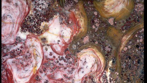 La découverte de molécules organiques piégées dans des roches vieilles de 3,5 milliards d'années