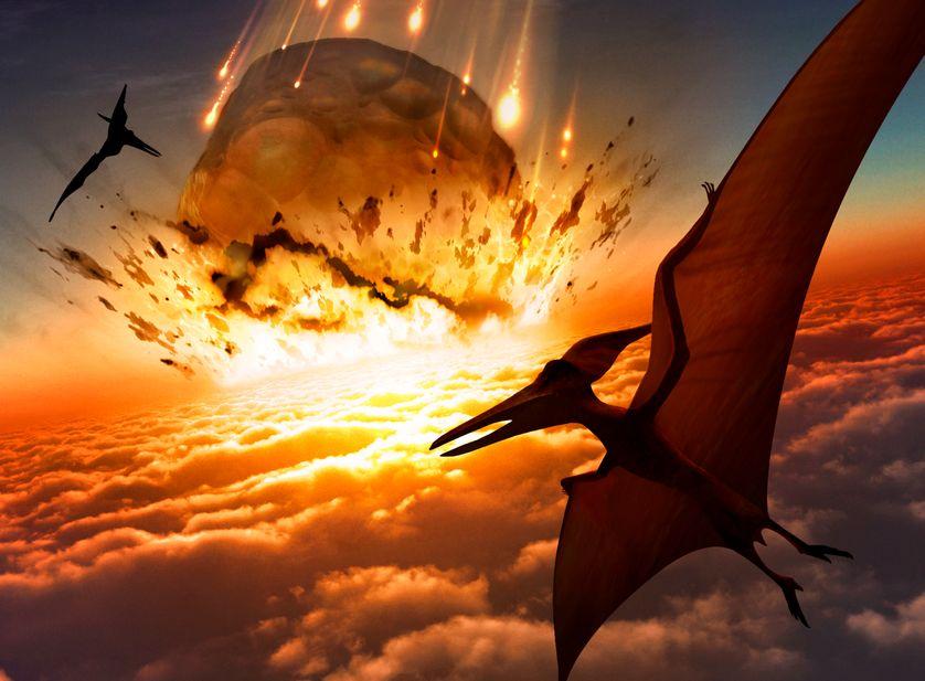 Extinction des dinosaures : la preuve ultime / dialoguer avec des dormeurs