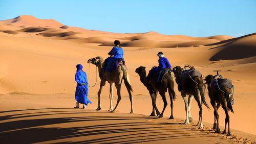 De la Préhistoire au XXIe siècle, les espaces multiples des nomades