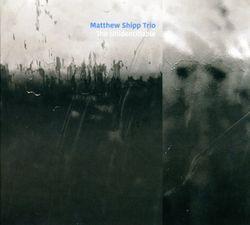 The unidentifiable - MATTHEW SHIPP