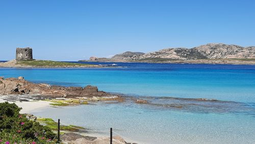 Le Parc naturel de l'Asinara en Sardaigne veut sauver la mer Méditerranée du plastique
