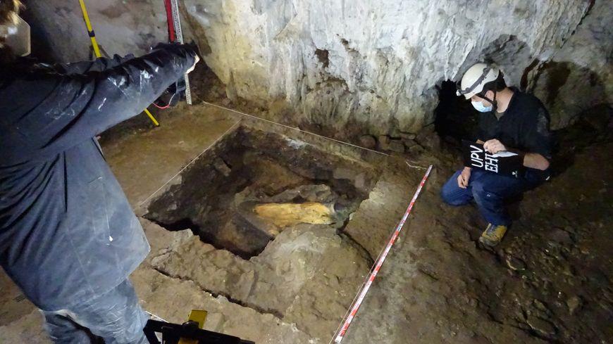 Des fouilles archéologiques révèlent que des hommes chassaient le mammouth à Isturitz