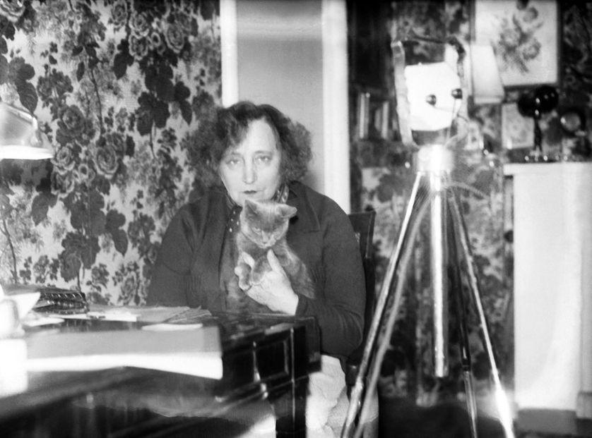 """La dictée de Rachid Santaki : extrait de """"Dialogues de bêtes"""" de Colette"""
