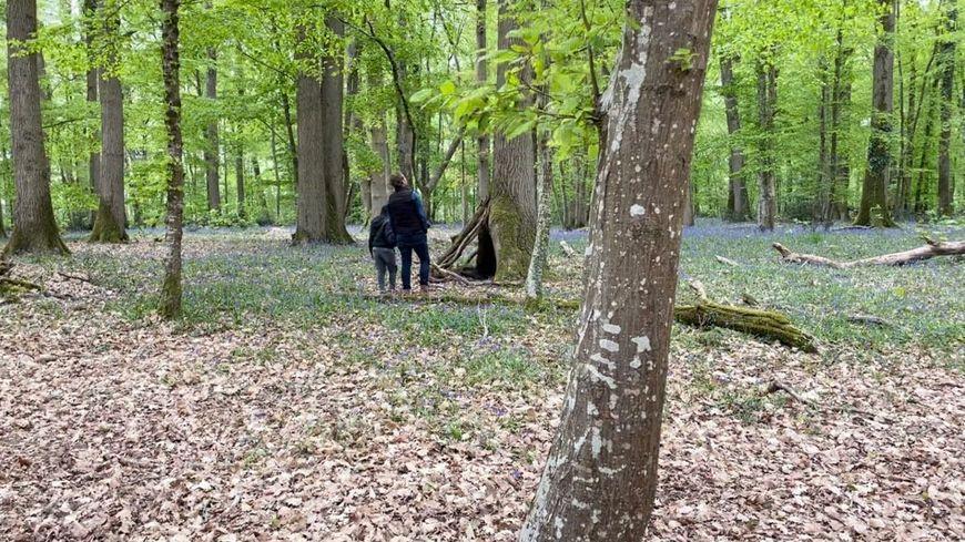 """Les quatre enfants handicapés accueillis par l'association """"Autrement dit"""" découvrent le parc du château de Taillé, à Fondettes."""