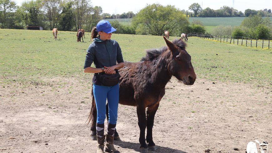 Murmurer à l'oreille des chevaux : en Mayenne, le Refuge de l'Arche a enfin trouvé sa chuchoteuse