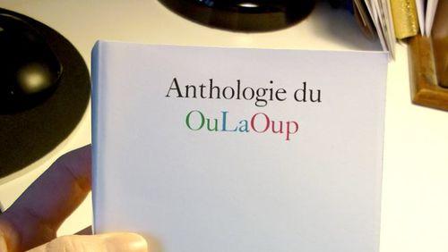 """Nuit de l'Oulipo 1/2 (2/11) : Clémentine Mélois : """"Ce que j'aime bien c'est structurer, c'est-à-dire établir un schéma qui va organiser l'écriture du livre"""""""