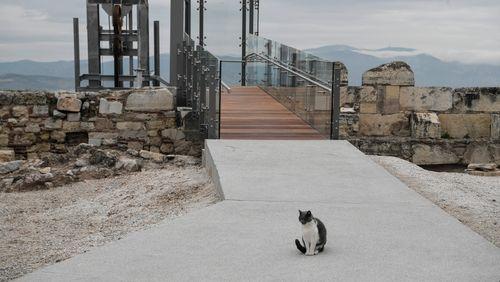 En Grèce, le Parthénon défiguré ?