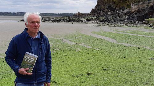 Le retour précoce des algues en Bretagne : la marée est en vert