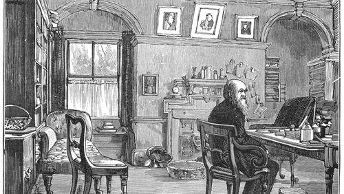 Épisode 4 : Darwin et la littérature : les noces rebelles