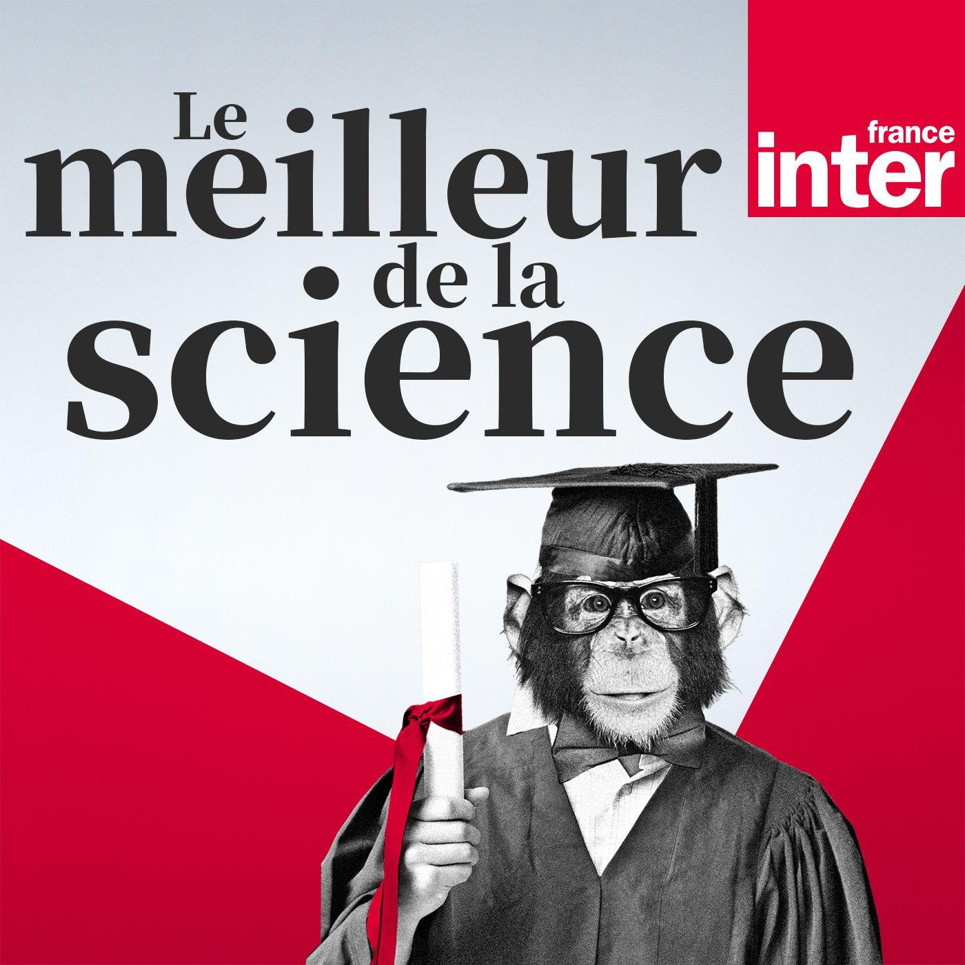 Image 1: Le meilleur de la science