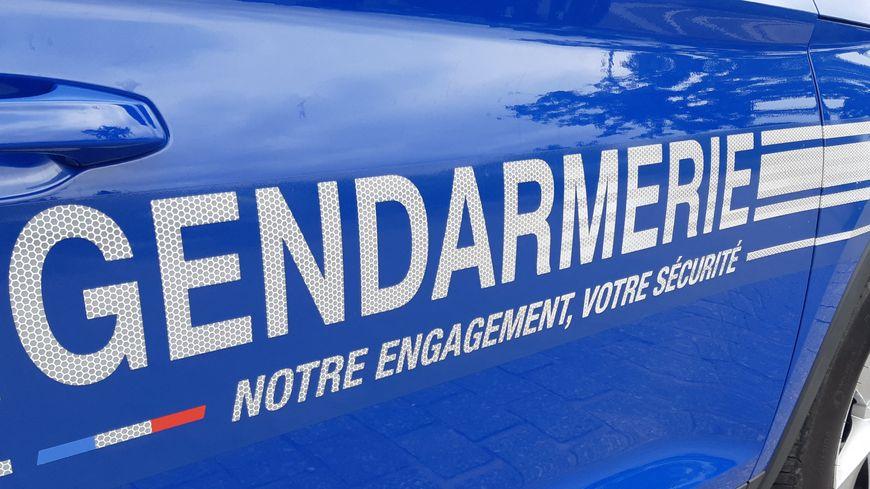 Les gendarmes ont retrouvé un crâne entier ainsi que la partie haute d'un autre dans une forêt du Pays de Montbéliard