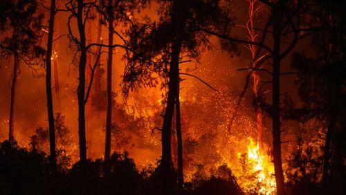 Nouveaux incendies climatiques en Turquie et dans le sud de l'Europe