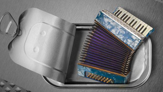 Brut d'accordéon