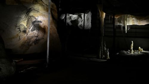 Dans la grotte Chauvet, un voyage dans les rêves de nos ancêtres. Avec Carole Fritz et Marie Bardisa