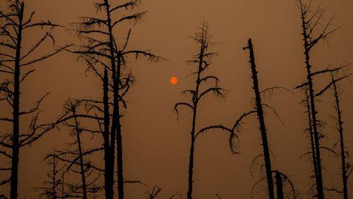 Dérèglement climatique : vivre avec les catastrophes 3/4 : De la Sibérie au Canada : le feu sous la glace
