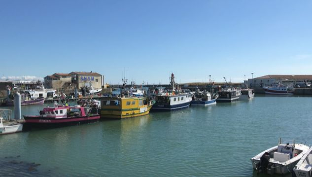 Les bons poissons du port de pêche de la côtinière sur l'île d'Oléron