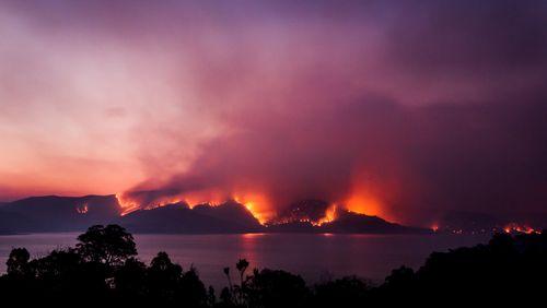 Les conséquences des grands incendies sur les océans / Un pas de plus vers la création de cellules de synthèse
