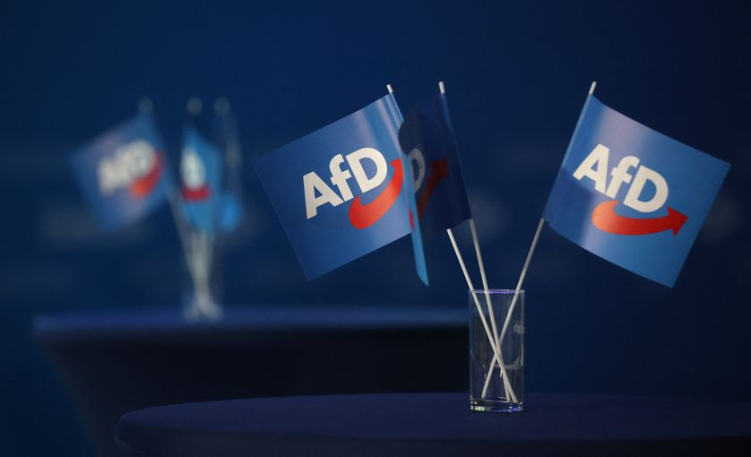En Allemagne, l'extrême-droite a-t-elle atteint ses limites ?