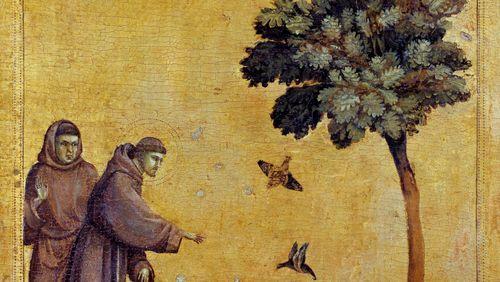 Des oiseaux et des poètes